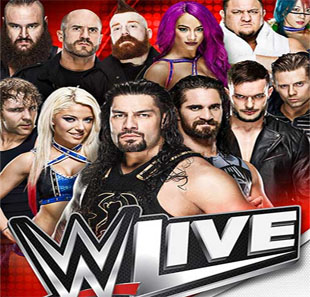 Catch WWE LIVE BRUXELLES - BRUSSEL