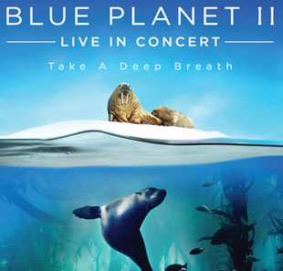 Documentaire BLUE PLANET II - LIVE IN CONCERT BRUXELLES-BRUSSEL